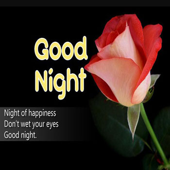 Good Night Text For Her Image