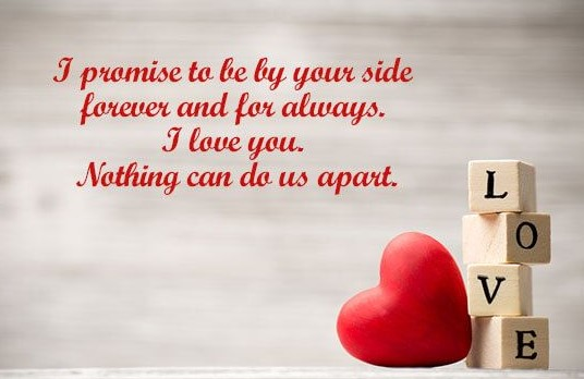 Funny Valentines Day Quotes for Husband