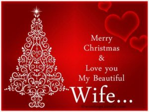 merry christmas wife